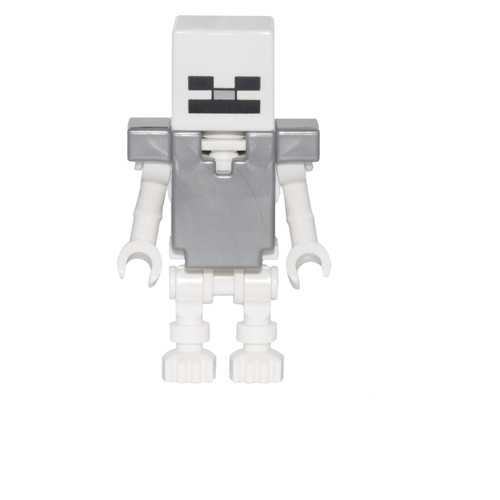 Skeleton with Armour