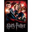 Hogwarts School Poster Puzzle