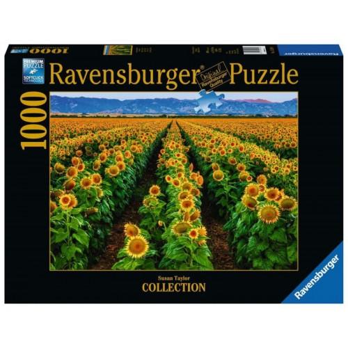 Ravensburger - Fields of Gold 1000pc Jigsaw