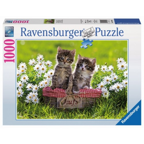 Ravensburger - Picnic in the Meadow 1000pc Jigsaw