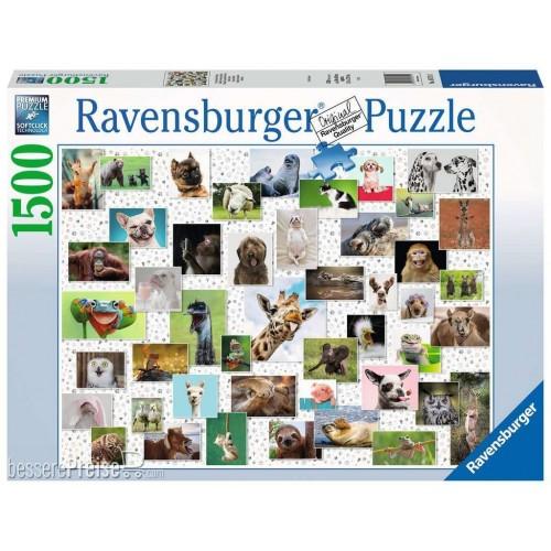 Ravensburger - Funny...