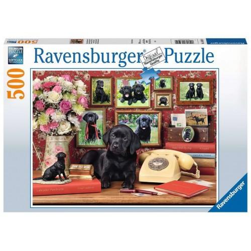 Ravensburger -  My Loyal...